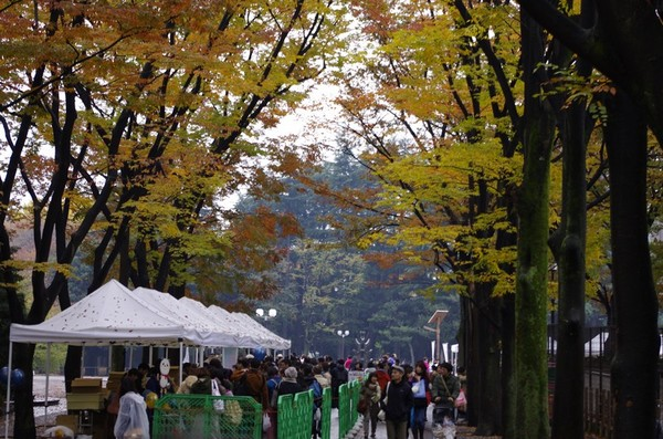 世田谷公園へ移動
