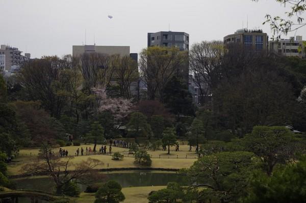 ビル群の中の公園
