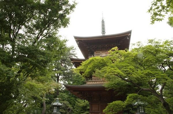 豪徳寺の三重塔