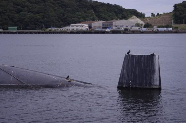 退役した潜水艦