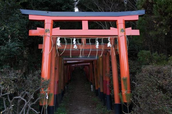白赤稲荷神社に到着。鳥居をくぐって本殿へ
