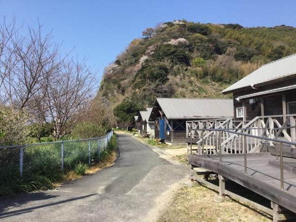 大津島を歩く