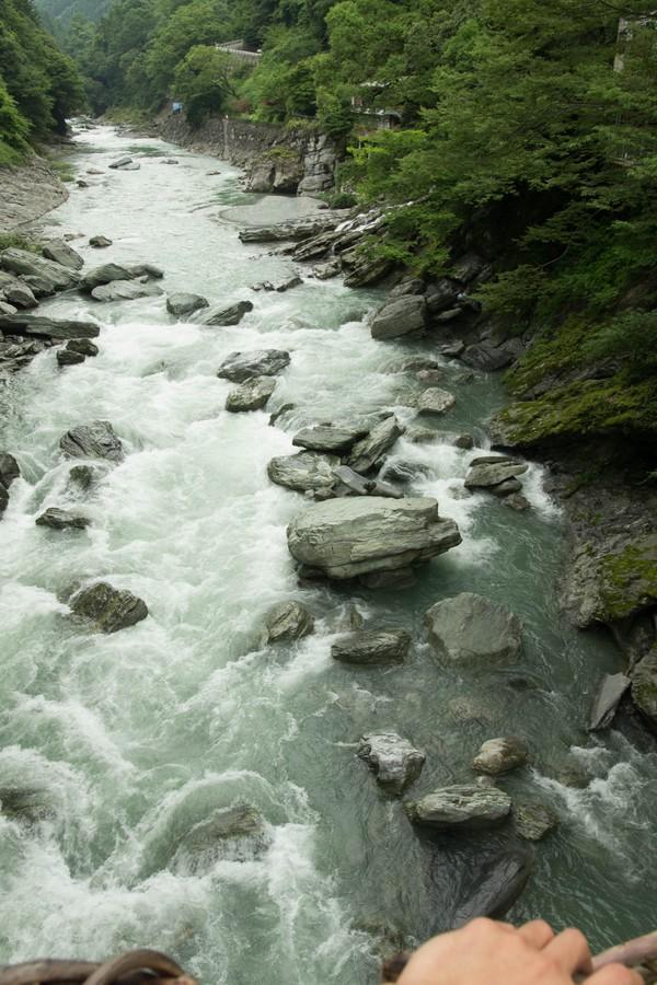 かずら橋から川を望む