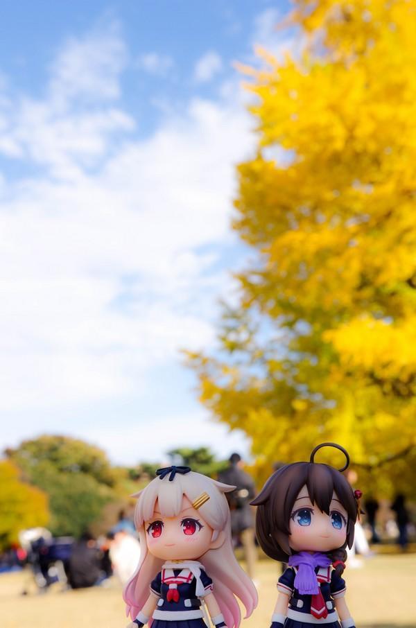 イチョウ(夕立&時雨)