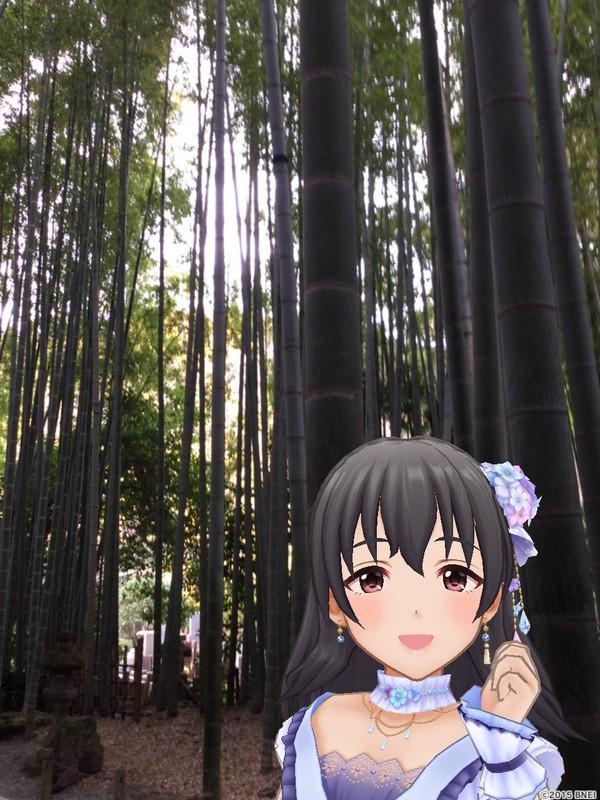 デレステARでなよ竹の美器を再現