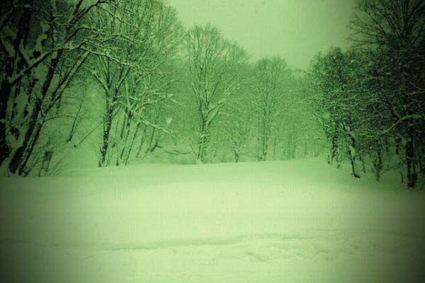 2010-12-29-001.jpg