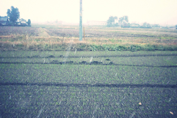 h2011-12-02-001.jpg