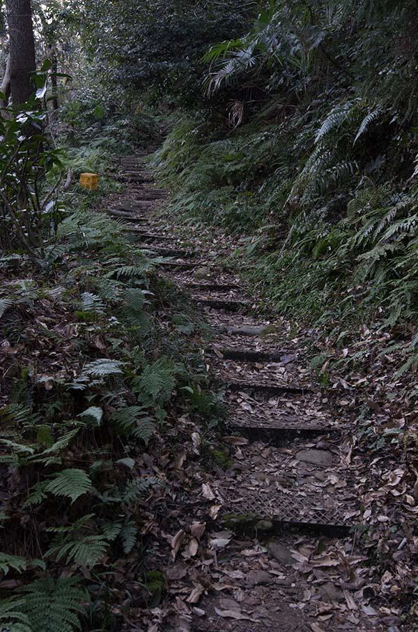山道をあがり神社を目指す