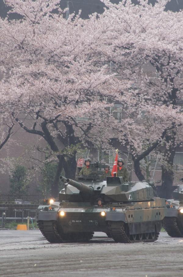 桜と10式戦車