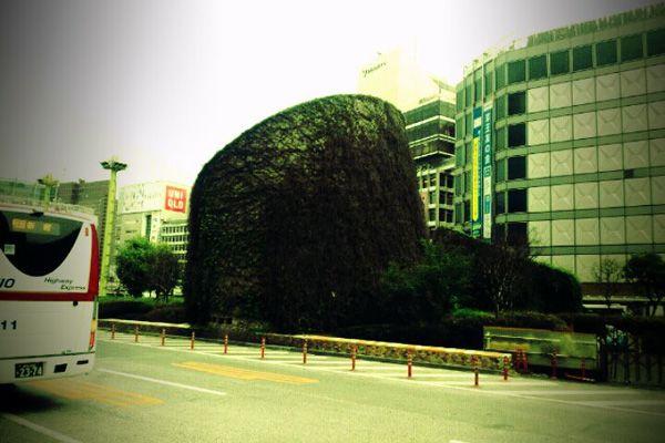 2011-04-22-001.jpg